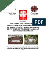 Estudio_de_Viabilidad_Caritas_MDD_ FINAL_0.1.pdf