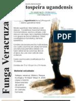 FUNGA VERACRUZANA Num.92 Tretospeira ugandensis