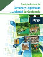 AR. Principios Basicos del Derecho y Legislacion Ambiental d.pdf