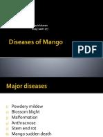 Diseases of Mango (2)