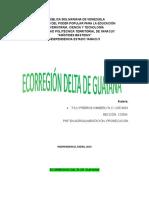 Ecorregión Delta de Guayana