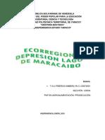 Ecorregion DEPRESION Lago DE MARACAIBO