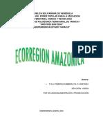 ECORREGION AMAZONICA VENEZUELA