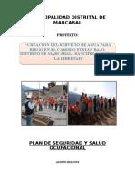 PLAN DE SEGURIDAD Y SALUD OCUPACIONAL.docx