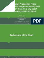 Bioethanol Production From Breadnut (Artocarpus Camansi) Proposal