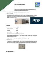 Trasplante Del Mandarina Version 5 0