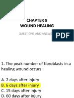 Wound-Healing.pdf