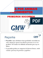 PICADA POR ANIMAIS PEÇONHENTOS.ppt