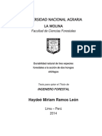 DURABILIDAD NATURAL DE TRES ESPECIES FORESTALES A LA ACCION DE DOS HONGOS XILÓFAGOS.pdf