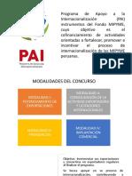 Programas Del PAI