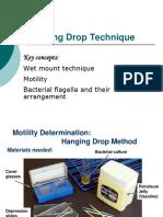 Ex6_Hanging Drop Technique.pptx
