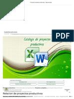 Proyectos Productivos Elaborados - Agroproyectos