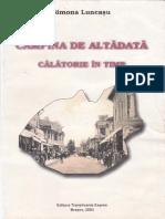 Campina_De_Altadata_Simona_Luncasu_OCR.pdf