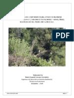 Informe Componente Fauna