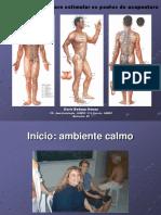 ACUPUNTURA. (apostila) HENAO. Manual de Instruções.pdf