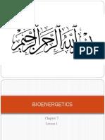 Bioenergetics Lesson 1