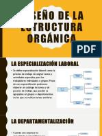 Diseño de La Estructura Orgánica