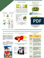 Proyecto-Moringa.pdf