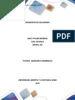 Diagnostico Comunitario -Daiccy Palma
