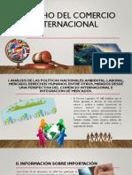 Derecho Del Comercio Internacional--Energia