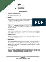 TDR LIQUIDADOR DE OBRA - DANY YANTAS.docx