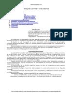 Principales Corrientes Hermeneuticas
