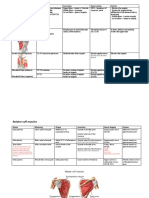 MSK Anatomy.docx