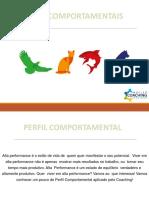 E-BOOK PERFIL COMPORTAMENTAL NÚCLEO DE COACHING DE MARINGÁ.pdf