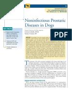 prostatite+standard