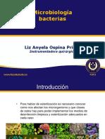 2. MICROORGANISMOS