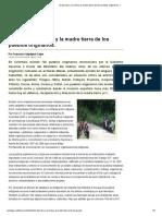 El Derecho a La Vida y La Madre Tierra de Los Pueblos Originarios.