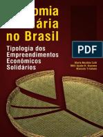 Economia_Solidaria_no_Brasil.pdf