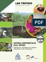 Sistemas Agroforestales en el Trifinio.pdf