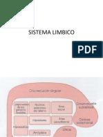 Límbico
