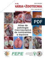 Atlas de Patologia Macroscópica de Ruminantes e Equinos - Caderno Técnico 84.pdf