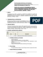 TERMINOS DE REFERENCIA - CONTROL DE CALIDAD DE GEOMEMBRANA.doc