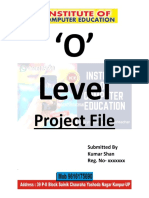 Project o Level