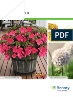 Begonia Benarensis (ES_INT_Technical_Guide).pdf