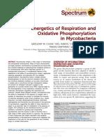 Cook GM. Energetics of Respiration and Oxidative Phosphorylation in Mycobacteria