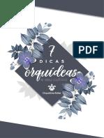 7 Dicas Orquideas e Seu Cultivo
