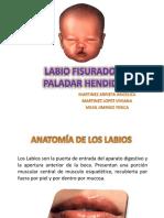 PALADAR DURO ENAO.ppt