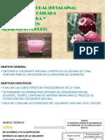 PROYECTOMETODOLOGIA2