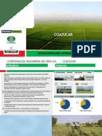 Docslide.net Coazucar Banco Central de Reserva Del Peru Coazucar Es El Mas Grande Conglomerado Convertido