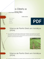 Plantio Direto e Solarização