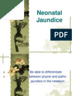 06 Neonatal Jaundice-1