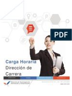 A19 Carga Horaria - Director Carrera