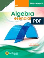 Solucionario de Álgebra esencial