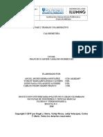 trabajo colaborativo física 3_v2.docx