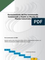 Gerenciamiento-Del-Precomisionado.pdf