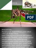 chikungunya_tugas presentasi